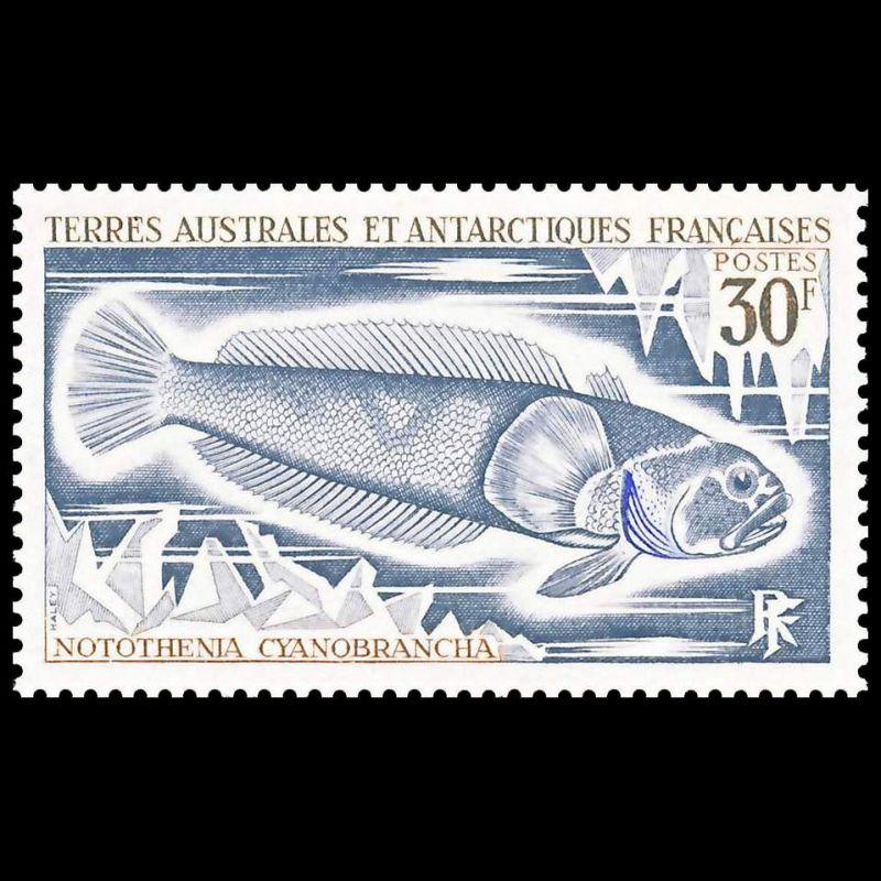Rep. des Comores ** Bloc n° 19 oblitéré - Histoire de l´aviation