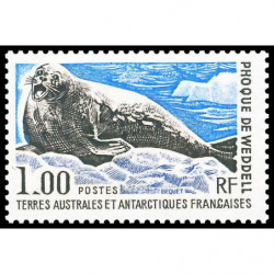 COMORES - 1976 - INNSBRUCK - BLOC N°5B oblitéré