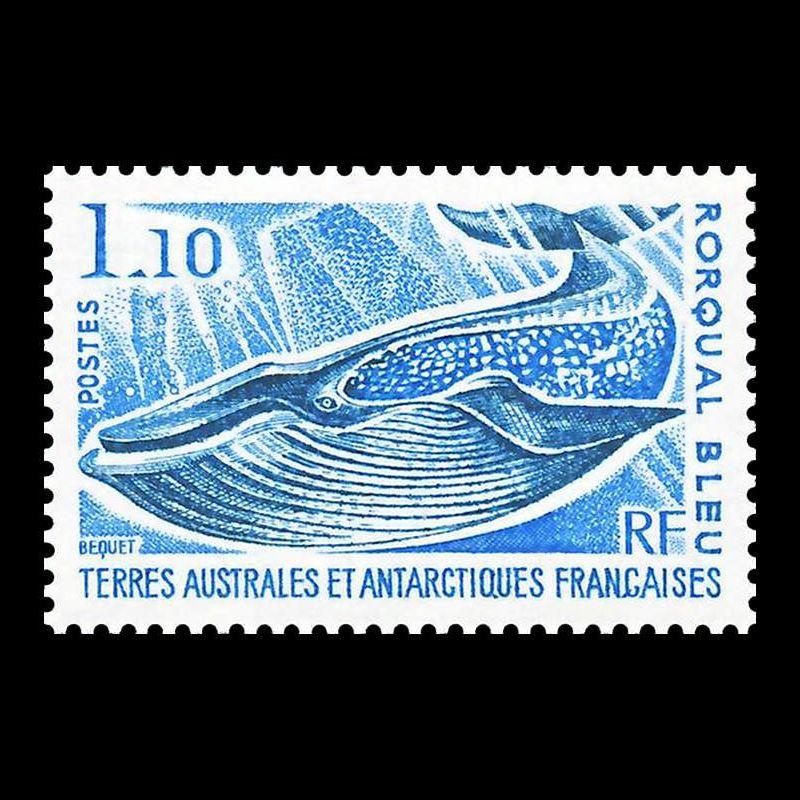 COMORES - 1976 - OPERATION VIKING - BLOC N°4 oblitéré