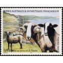 Carte Maximum - Code postal - 3/06/72 Paris