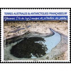 Bloc de timbre n° 2 FEUILLET SOUVENIR YVERT ET TELLIER 2009