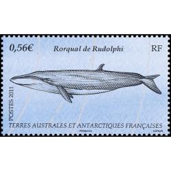 Tanzanie 1994 oblitéré - animaux - Michel Nr. bloc 251