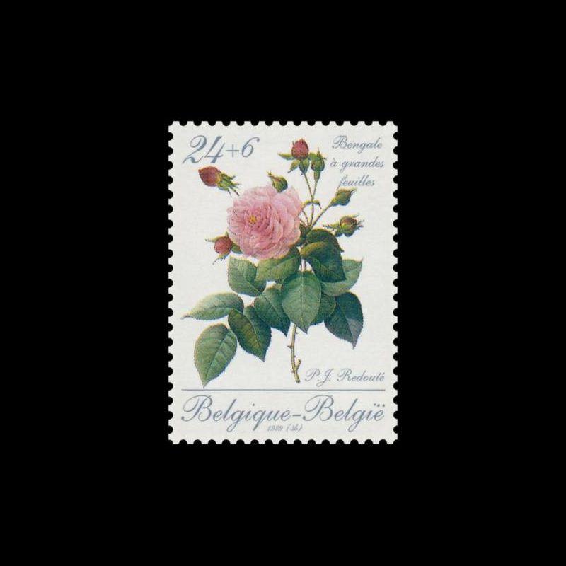 1993 Notice Philatélique - Timbres de service Unesco