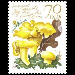 CEF - Dr Schweitzer, centenaire de sa naissance - 11/1/1975 Kaysersberg