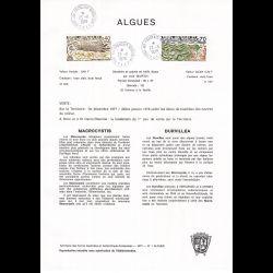 """CEF - 1ère Émission """"Liberté"""" (env 2 sur 5) - 4/1/1982 Paris"""